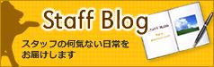 Staff Blog スタッフの何気ない日常をお届けします